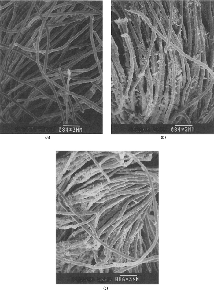 Scanning electron micrographs of (a) host cotton fiber, (b) polypyrrole-based conducting fiber and (c) polythiophene-based conducting fiber. The conducting composites were prepared by employing 2.98 mol/L of pyrrole and 1.23 mol/L of BT in acetonitrile as the monomer solution and 1.23 mol/L of FeCl