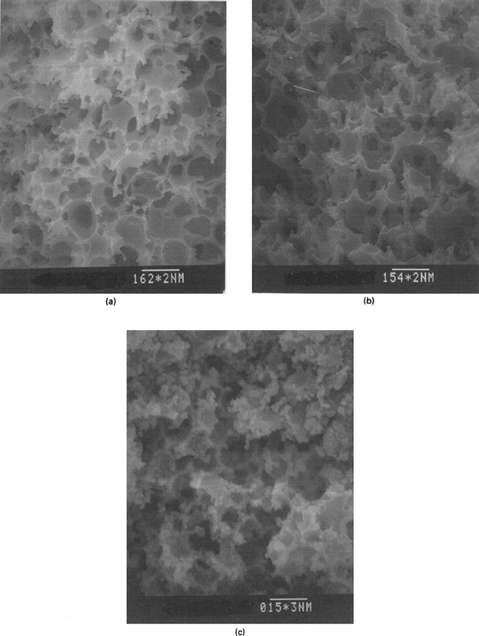 Scanning electron micrographs of (a) host crosslinked PS, (b) polypyrrole-based composite and (c) polythiophene-based composite. The conducting composites were prepared by employing 2.98 mol/L of pyrrole and 1.23 mol/L of BT in acetonitrile as the monomer solution and 1.23 mol/L of FeCl