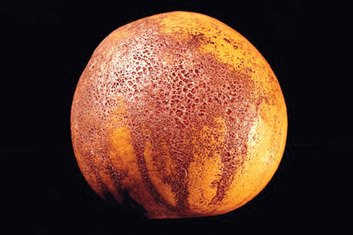 A combination of mudcake and tear-staining of melanose on grapefruit rind