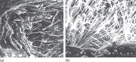 Comparison of crystalline concrete: (a) before; (b) after.