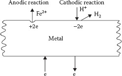Cathodic and anodic reactions on the metal surface.