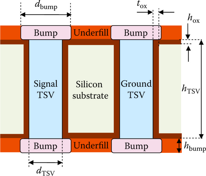 Structure of signal TSV and ground TSV with bumps.